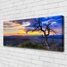 Acrylglas-Bild Wandbilder Druck 125x50 Deko Landschaften Zakynthos