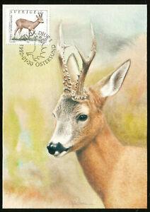 NORTHERN EUROPE WILD ANIMALS DEER - STAG MAXIMUM CARD FROM SWEDEN 1992 FAUNA