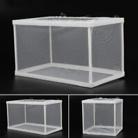 1 Pcs Aquarium Fish Tank Guppy Breeding Breeder Baby/Fry Net Trap Box Hatchery