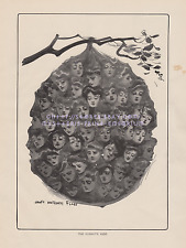 1907 ANTIQUE Vintage PRINT-James Flagg-Victorian Women Hornets Nest! Humor-Fun