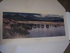 """Larry Zabel Art Ltd Edition Signed """"Hayden Valley Crossing""""  Unframed Buffalo"""