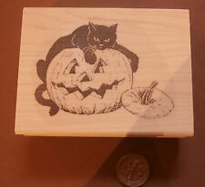 P17 Black cat on pumpkin-Halloween Rubber Stamp WM