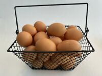 WIRE CHICKEN EGG BASKET... FOR GATHERING EGGS ...POULTRY... Rectangle...Black..