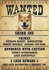 """SHIBA INU Wanted Poster Fridge Dog Magnet LARGE 3.5"""" X 5"""""""