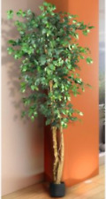 Silk Ficus Tree 6' Tall Artificial Plant Indoor Potted Decor Large Floral Yard