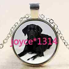Vintage Cute Dog Cabochon Tibetan silver Glass Chain Pendant Necklace #1769