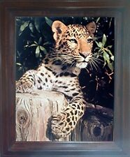 Leopard (Panther, Jaguar, Big Cat) Wild Animal Brown Framed Wall Decor Picture