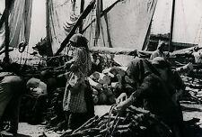 SPLIT c. 1940 -  Marché au Bois sur le Port Yougoslavie - DIV 3329