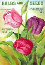 Fabric Block Vintage Label Bulbs & Seeds Autumn 1912 Floral Advertisement Tulips