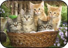 Cute KITTENS Mouse Mat / Pad. Fade and Scratch Resistant. Gift Idea
