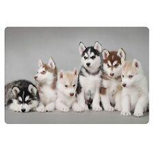 Cute Dog Print Doormat Room Entrance Door Mats Carpet Area rug Modern Floor Home