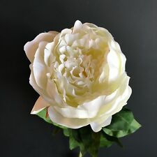 Large Faux Silk Cream Peony, Artificial Luxury Giant Flower - Off White Ivory