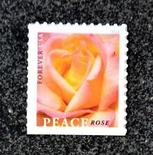 2018USA Forever Peace Rose - Single From Booklet  Mint  orange flower wedding