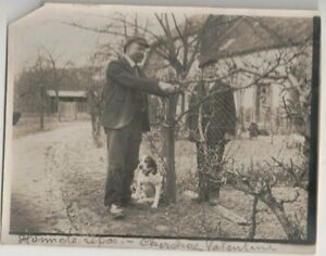 Vintage Photo 2 Men & A Dog Pruning Trees in A European Town City 5 X 4 Inches