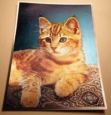 Vintage DUFEX English Print Cool Cat 1980s Foil Print