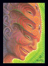 "TOOL Band Artist Alex Grey ""Shpongled"" Blotter Art Print S/N Edition of 125 COSM"