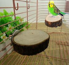 Pet Bird Parrot Chew Bite Toy Wood Stand Swing Cage Hanging Cockatiel Parakeet C