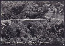 LA SPEZIA SESTA GODANO 03 Fraz. CHIUSOLA - PONTE Cartolina FOTOGRAFICA viag 1964