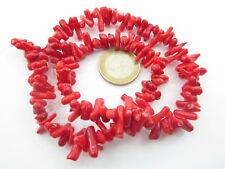 1 filo di rametti corti in corallo bambù rosso irregolari lungo 40 cm