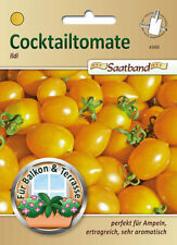 Cocktailtomate 'Ildi' - Lycopersicon esculentum, Saatband, Tomate, 43065