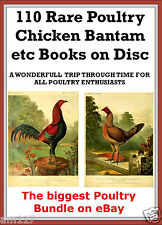 110 Poultry Bantam Chicken Vintage Antiquarian Rare Books DVD + Free jpeg pics