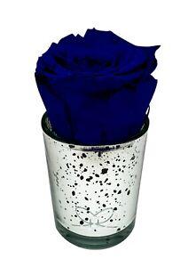 Preserved rose -ROYAL BLUE- In silver mercury glass  long-lasting eternal Luxury