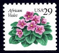 Rob/'s Loose Noodle 2 Blätter//2 leaves African Violet Usambaraveilchen