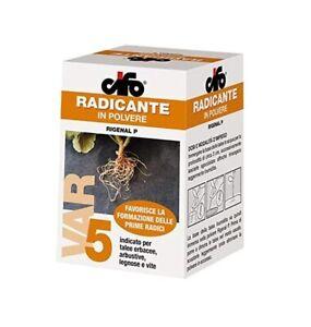 Rigenal P Radicante in Polvere per Tutti i Tipi di Talea Talee 100 Gr Rigenera