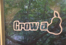 Grow A Pear (PAIR) window car sticker vinyl decal funny jdm honda