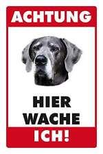 Blechschild - DOGGE HIER WACHE ICH -  20x30 cm 23005