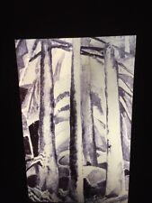 "Emily Carr ""Forest Interior Study"" Canadian Art 35mm Slide"