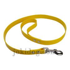 laisse biothane Gold 25 mm x 1,20 m jaune oeuf - jokidog