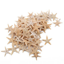 100pcs/set Natural Starfish Craft Sea Stars Adornments DIY Home Beach Room Decor