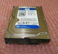 """Western Digital WD250AAKX Caviar Blue 250GB 72000RPM 16MB 3.5"""" Internal HDD"""