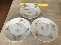 Theodore Haviland, Limoges France, Schlepper#150,, Luncheon Plates 8 inch