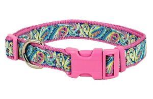 Douglas Paquette RIVIERA BLUE Nylon & Ribbon Adjustable Dog Collar, Harness
