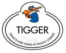 Disney Pin 13114 WDW Cast Member Name Tag Tigger Wide World of Sports Complex LE