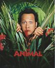 ROB SCHNEIDER signed autographed THE ANIMAL 8x10 photo w/COA PROOF