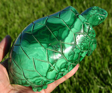 "Gorgeous 5.8"" Huge Green Malachite Crystal Turtle Carving, Solid Gemstone, Great"