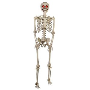 5 ft. Hanging Plastic Posable Skeleton with LED Eyes