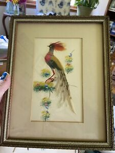 2 Antique Handmade Real Feathers Exotic Birds Framed Wall Hangings With Glass