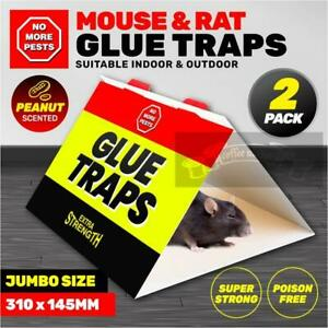 Glue Non-toxic Board Rodent Mouse Sticky Snare Catcher AU STOCK