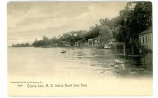 Cayuga Lake NY - LOOKING SOUTH FROM PARK - Rotograph Co Postcard