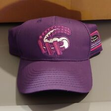 Altoona Curve MiLB Alzheimers Awareness Baseball Cap SGA