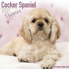 Cocker Spaniel Puppies Calendar 2021 Premium Dog Breed Calendars