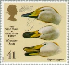 GREAT BRITAIN -1996- Whooper Swan (Cygnus cygnus) - MNH - Sc. #1657