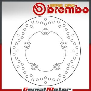Brake Disc Fixed Brembo Serie Oro Rear for Yamaha Yzf R6 600 2005 > 2016
