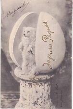 CPA 83 - Pâques - Joyeuses Pâques Un Chien ...