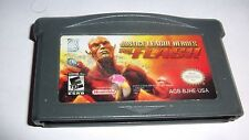 Justice League Heroes The Flash GBA