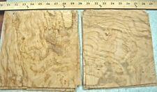 "Olive Ash Burl wood veneer 7"" x 8"" raw veneer no backing ""A"" quality grade 1/42"""
